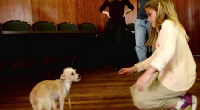 Elle tend sa main à un chien abandonné. Sa réaction est plus que touchante