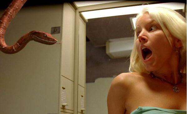 Les meilleurs films (parfois) d'horreur avec des serpents terrifiants