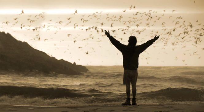 Les meilleurs films pour découvrir la nature et avoir envie de voyager