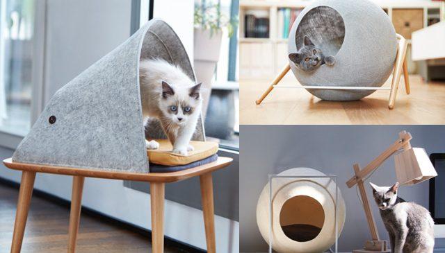 Deux jeunes français inventent du mobilier de luxe pour les chats