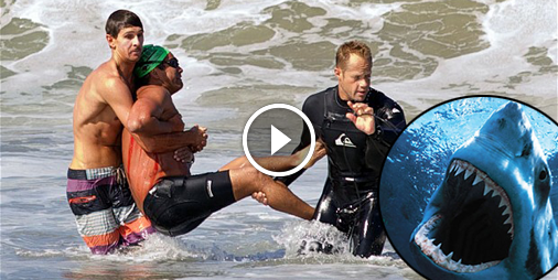 Mordu par un requin, il filme sa blessure en montant dans l'ambulance