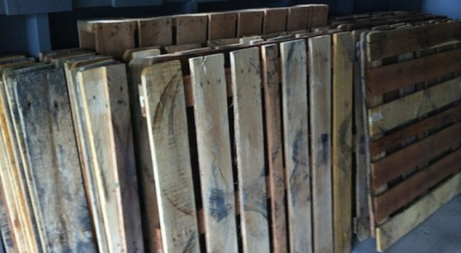 Une famille a amassé de vieilles palettes pendant des mois, ce qu'ils en ont fait est génial!