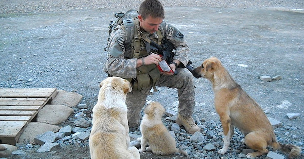 Rencontrer un militaire de carriere