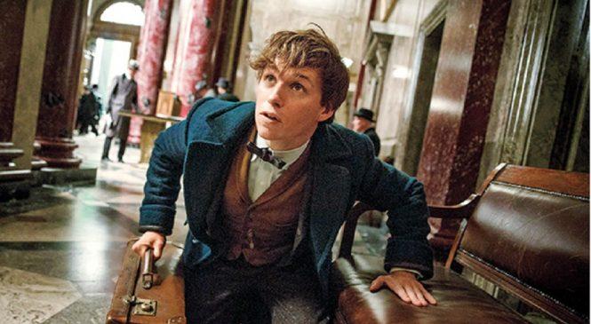 Les Animaux Fantastiques : La bande annonce du film dans l'univers de Harry Potter