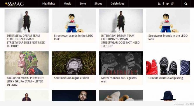 5 thèmes WordPress pour un blog buzz et viral