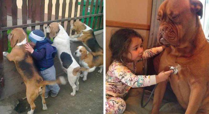 15 photos mignonnes d'enfants avec leurs animaux de compagnie