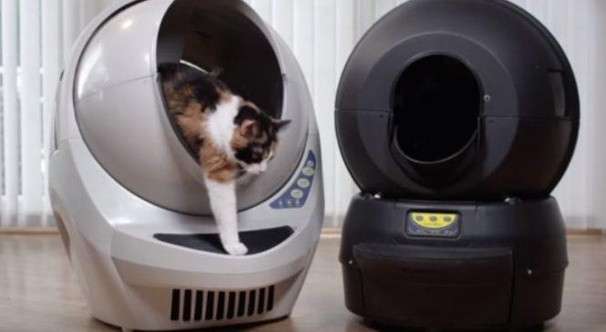 Découvrez le robot qui dispose d'une litière avec nettoyage automatique !