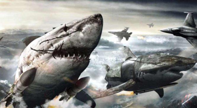 Top 10 des films récents avec des requins tueurs