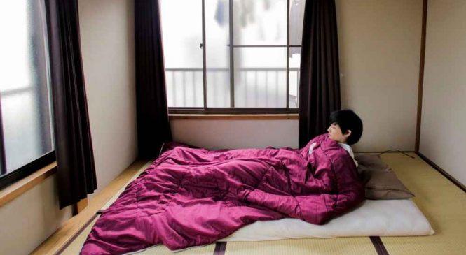 Nous avons jeté un coup d'œil dans les maisons minimalistes des japonais. C'est magnifique !