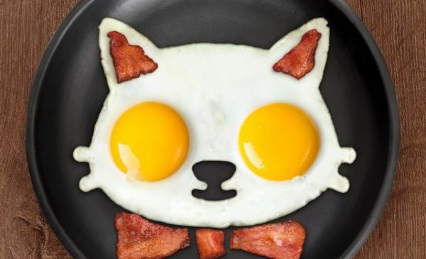 10 moules à œufs insolites et originaux