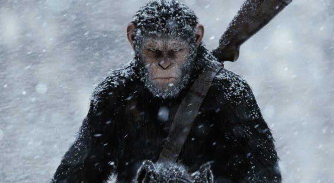 La planète des singes – Suprématie : Une bataille épique contre les humains