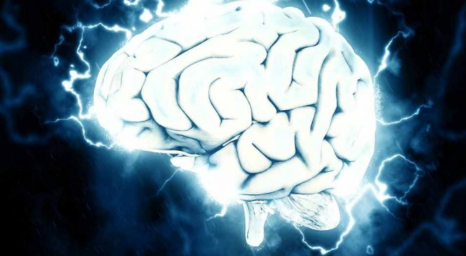 Booster ses capacités intellectuelles et sa concentration