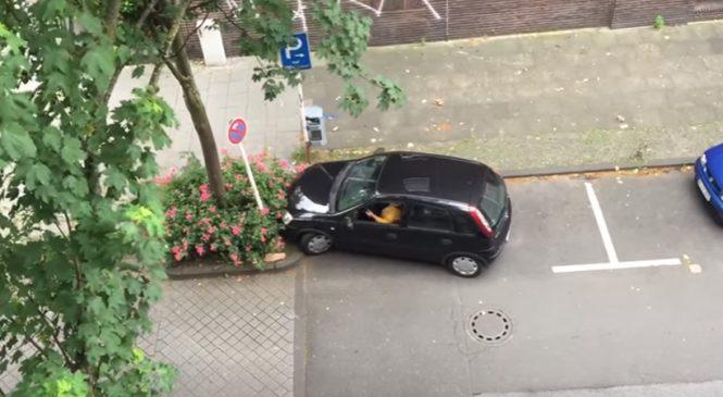 De sa fenêtre, un mec a filmé une femme qui essayait de se garer. Vous allez rouler sur le sol en explosant de rire!