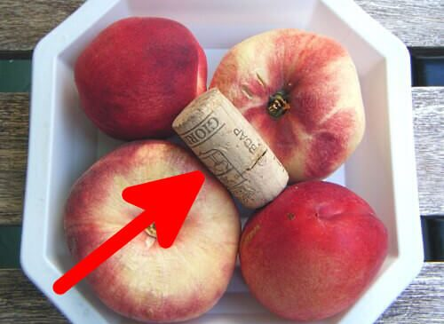 Empêcher vos fruits de pourrir trop rapidement avec ce guide