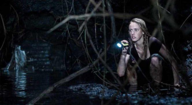 Crawl film d'horreur 2019